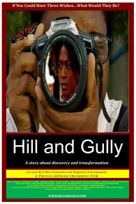 hill and gully